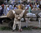 Индия закрывает тендер по карбамиду, Пакистан купит товар по бартеру