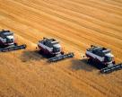 Крым начал уборку ранних зерновых