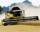 Аграрии собрали 13 млн. тонн зерна