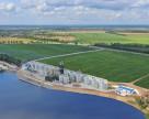 «Нибулон» собрал 96 тыс. тонн ранних зерновых