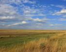 Аграрии Одесской области не могут приступить к севу озимых зерновых