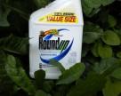 Monsanto представило в США