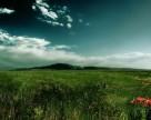 Агрохолдинг KSG Agro увеличил земельный банк на 20,8 тыс. га