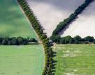 Минагрополитики  планирует  усовершенствовать систему охраны плодородия почв с помощью опыта Германии