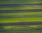 Для многих людей продажа сельскохозяйст¬венных земель — это продажа Украины