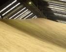 ГПЗКУ приняла на хранение 1,4 млн тонн зерна урожая