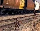 Из Украины спешно вывозят зерно
