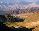 Два завода будут построены в Узбекистане