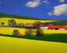 Конкуренция на рынке пестицидов скоро перейдет из ценовой в агросервисную плоскость