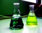 Россия наращивает производственные мощности пестицидов