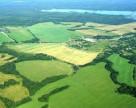 Антимонопольный комитет займется рынком аренды сельхозземель