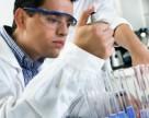 Monsanto приобрела компанию Rosetta Green