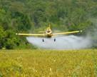 В России растет Объем производства средств защиты растений