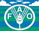 ФАО прогнозирует увеличение Украиной ежегодного экспорта пшеницы до 14 млн т