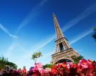 В какие отрасли украинского АПК будут инвестировать французы