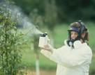 В Украине нет предприятий, способных утилизировать опасные пестициды