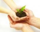 Бразильский штат Пара заинтересован в поставках калийных удобрений из Беларуси