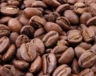Кофейная гуща – идеальное и дешевое удобрение