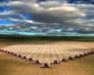 В Украине к 27 июня намолочено 3,5 млн. тонн зерна