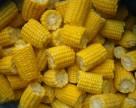 На Дніпропетровщині затримано вантаж американської кукурудзи, зараженої карантинним захворюванням