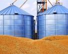 Украина намолотила 41,2 млн тонн зерна