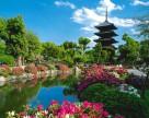 Японский рынок агрохимии для овощеводства достиг емкости 977 миллионов долларов в 2014 году