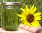 В Украине ускорят развитие биоэнергетики
