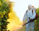 Изъято 23 тонны пестицидов