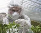 DuPont Pioneer инвестировал $2 млн в расширение исследовательских объектов