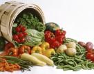 Семенной рынок овощей и фруктов стремительно растет
