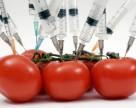 В России официально разрешили выращивать ГМО-культуры