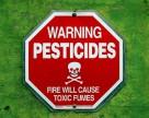 Жители столицы Индии употребляют ужасающее количество опасных химикатов