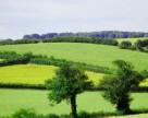 Как избежать двойной регистрации права на земельные участки