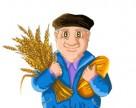 Говорят агрономы – Итоги 2013 года