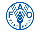 В Украине может появиться офис FАО