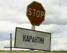 В Полтавській області скасовано, а в Чернігівській введено карантин рослин