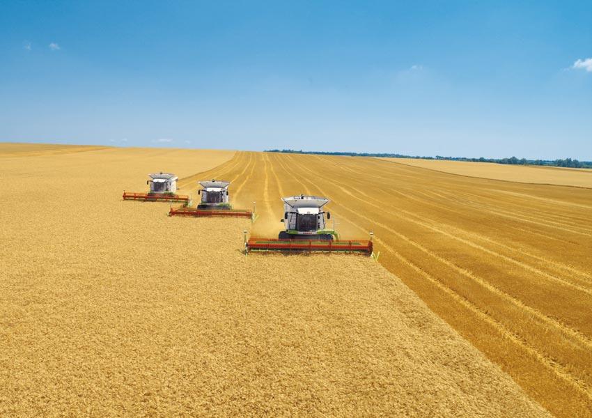 В Татарстане намолочено 3,2 млн тонн зерна, убрано 93% площадей