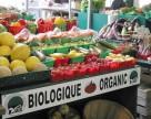 Розподіл органічних угідь у світі