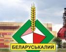 Чистая прибыль Беларуськалия выросла в 4 раза