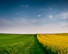 Дайджест земельного законодательства