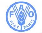 В Украине до 25% рынка СЗР составляет фальсифицированная продукция – FAO