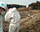Борьба с выбросами создает проблемы пестицидной промышленности Китая