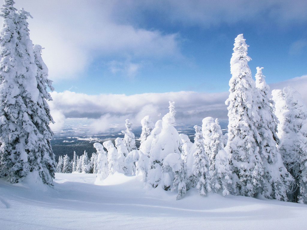 Картинки суровая зима