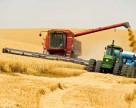 Кто возглавил агрохолдинг HarvEast, подконтрольный группе Ахметова