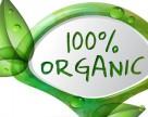 В ЕС предложили внедрить электронную систему сертификации органической продукции