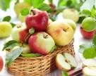 Украинские яблоки выиграли на девальвации гривны