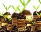 Канада инвестирует в биологические методы борьбы с вредителями