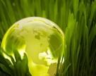 В Украине спрос на органическую продукцию превышает предложение