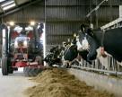«КВС-Украина» поможет животноводам получить качественный силос