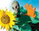 Украинские пестициды: утопия или реальность?